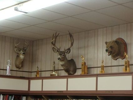 Schultz' trophies on display in Harrington - The Odessa Record